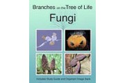 The Biology of Fungi