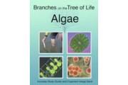 The Biology of Algae