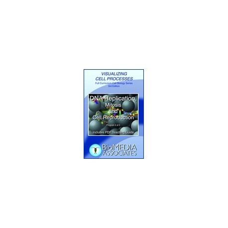 DNA Replication, Mitosis and Cell Reproduction DVD