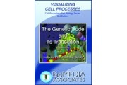 The Genetic Code and It's Translation DVD