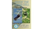How Cells Obtain Energy DVD