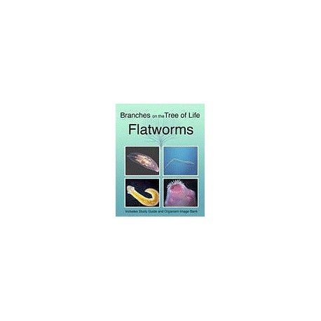 The Biology of Flatworms DVD