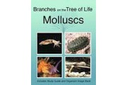 The Biology of Molluscs DVD