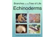 The Biology of Echinoderms DVD