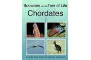 The Biology of Chordates DVD