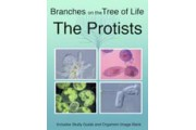 The Biology of Protists DVD