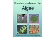 The Biology of Algae DVD