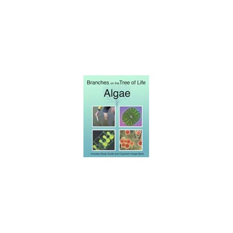 The Biology of Algae DVD