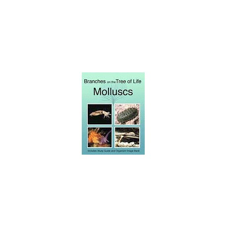 The Biology of Molluscs