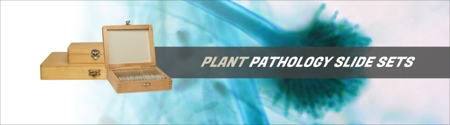 Plant Pathology Slide Sets