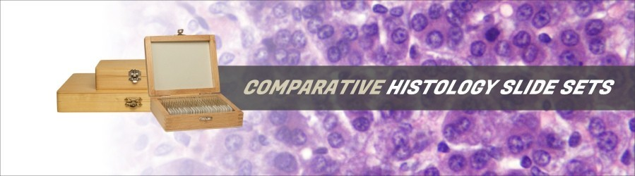 Comparative Histology Slide Sets