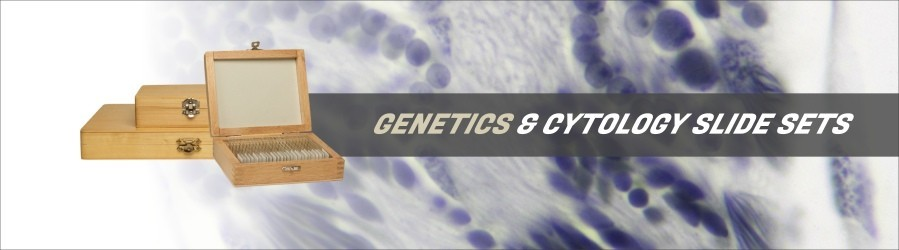 Cytology & Genetics Slide Sets